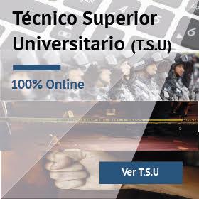 Técnico Superior Universitario